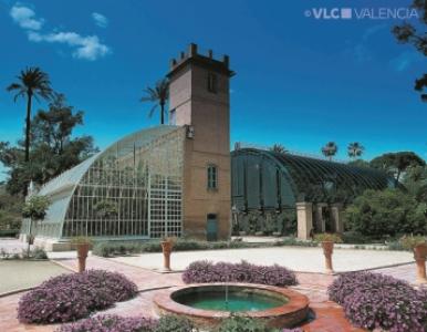 Il jardin botanico valencia - Jardin botanico valencia ...