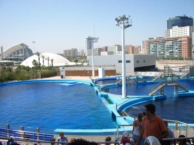 Il parco oceanografico valencia for Oceanografico valencia